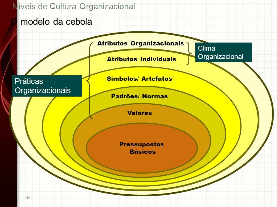 46 Níveis de Cultura Organizacional Simbolos/ Artefatos O modelo da cebola Atributos Organizacionais Atributos Individuais Clima Organizacional Padrõe