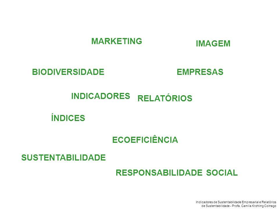 Indicadores de Sustentabilidade Empresarial e Relatórios de Sustentabilidade - Profa. Camila Krohling Colnago BIODIVERSIDADE RELATÓRIOS ECOEFICIÊNCIA