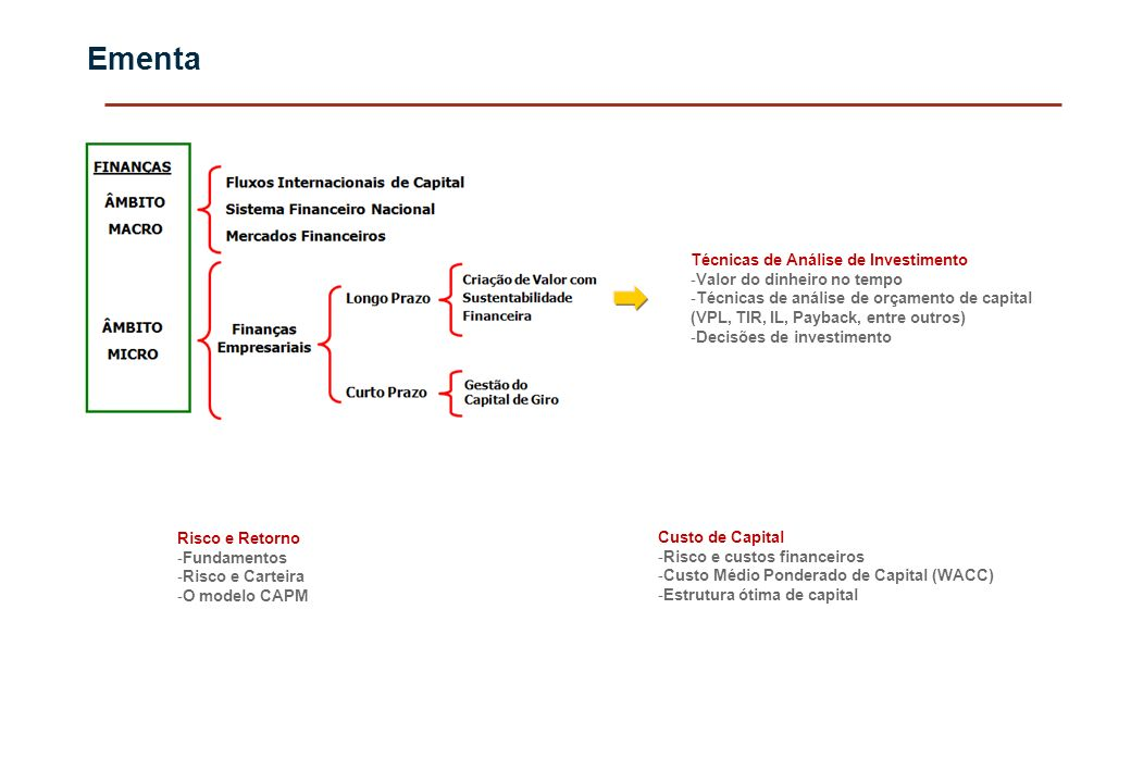 Ementa Técnicas de Análise de Investimento -Valor do dinheiro no tempo -Técnicas de análise de orçamento de capital (VPL, TIR, IL, Payback, entre outr