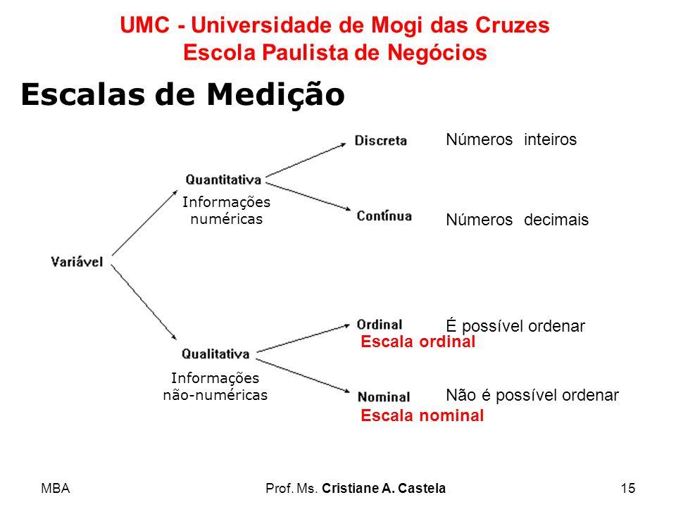 MBAProf. Ms. Cristiane A. Castela15 UMC - Universidade de Mogi das Cruzes Escola Paulista de Negócios Informações numéricas Informações não-numéricas