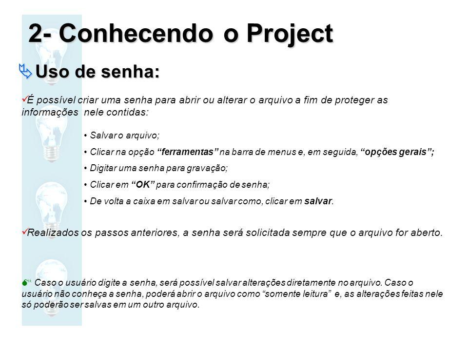 2- Conhecendo o Project Uso de senha: Uso de senha: É possível criar uma senha para abrir ou alterar o arquivo a fim de proteger as informações nele c