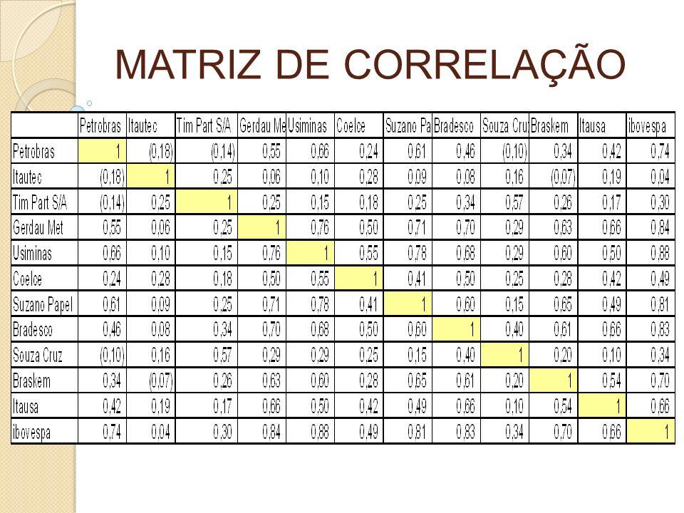 MATRIZ DE CORRELAÇÃO