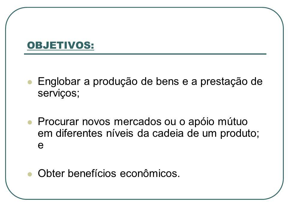 OBJETIVOS: Englobar a produção de bens e a prestação de serviços; Procurar novos mercados ou o apóio mútuo em diferentes níveis da cadeia de um produt