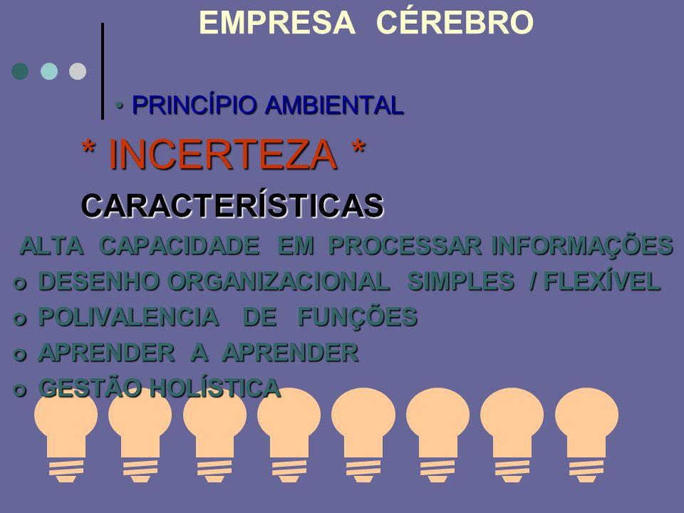 EMPRESA CÉREBRO PRINCÍPIO AMBIENTALPRINCÍPIO AMBIENTAL * INCERTEZA * CARACTERÍSTICAS ALTA CAPACIDADE EM PROCESSAR INFORMAÇÕES ALTA CAPACIDADE EM PROCE