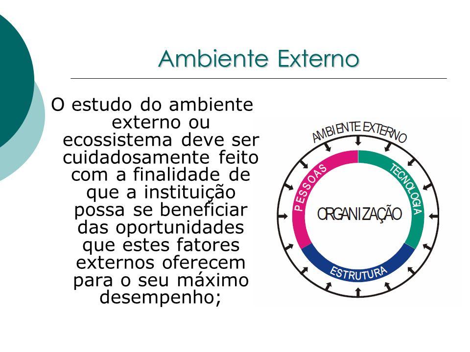 Ambiente Externo O estudo do ambiente externo ou ecossistema deve ser cuidadosamente feito com a finalidade de que a instituição possa se beneficiar d