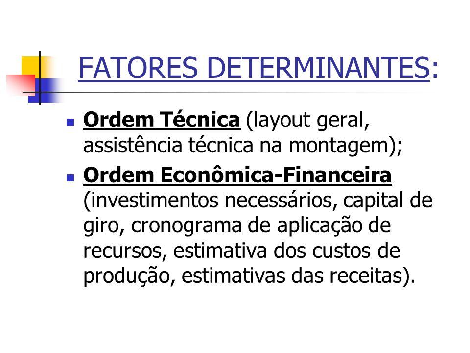 FATORES DETERMINANTES: Ordem Técnica (layout geral, assistência técnica na montagem); Ordem Econômica-Financeira (investimentos necessários, capital d