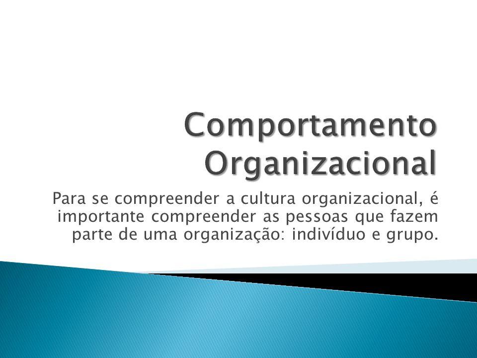 Para se compreender a cultura organizacional, é importante compreender as pessoas que fazem parte de uma organização: indivíduo e grupo.