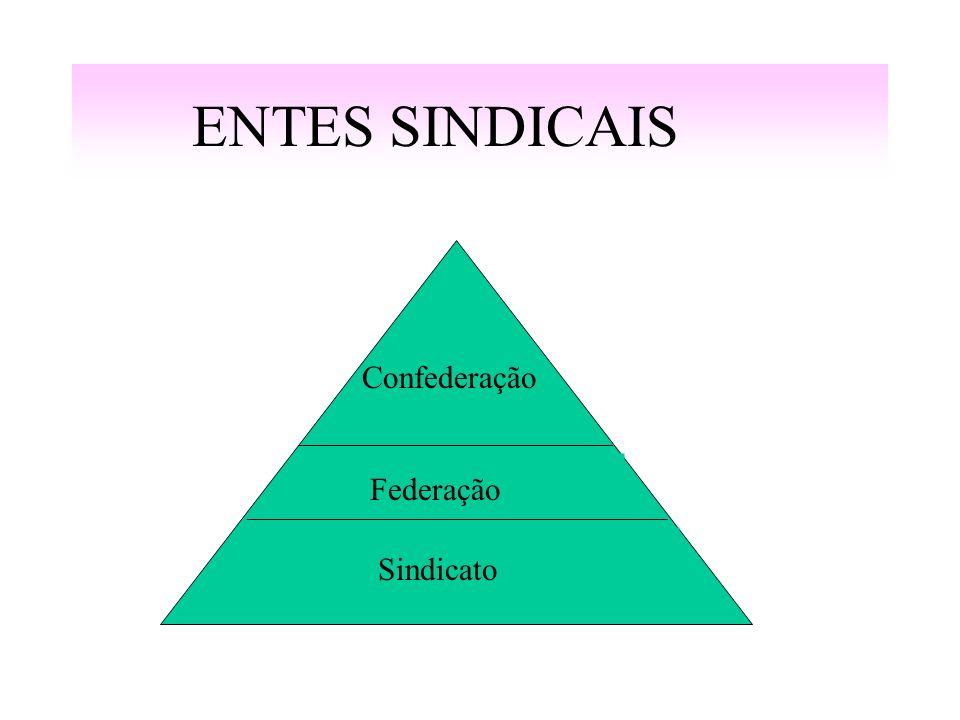 ENTES SINDICAIS Confederação Federação Sindicato