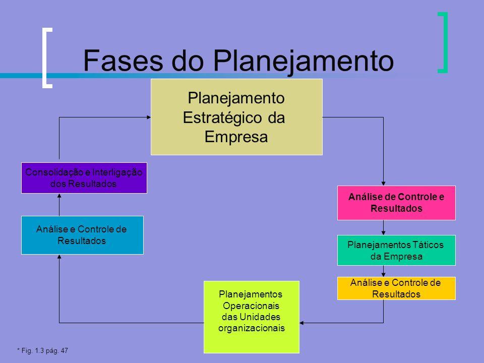 Fases do Planejamento Planejamento Estratégico da Empresa Análise de Controle e Resultados Planejamentos Táticos da Empresa Análise e Controle de Resu