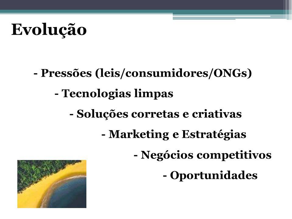 Evolução - Pressões (leis/consumidores/ONGs) - Tecnologias limpas - Soluções corretas e criativas - Marketing e Estratégias - Negócios competitivos -