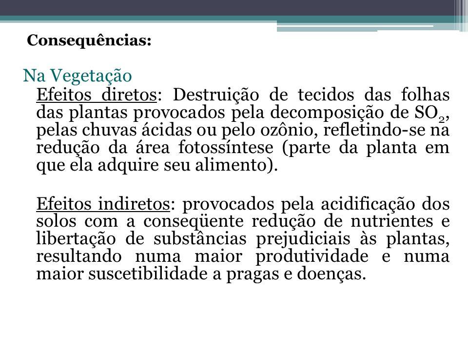Consequências: Na Vegetação Efeitos diretos: Destruição de tecidos das folhas das plantas provocados pela decomposição de SO 2, pelas chuvas ácidas ou