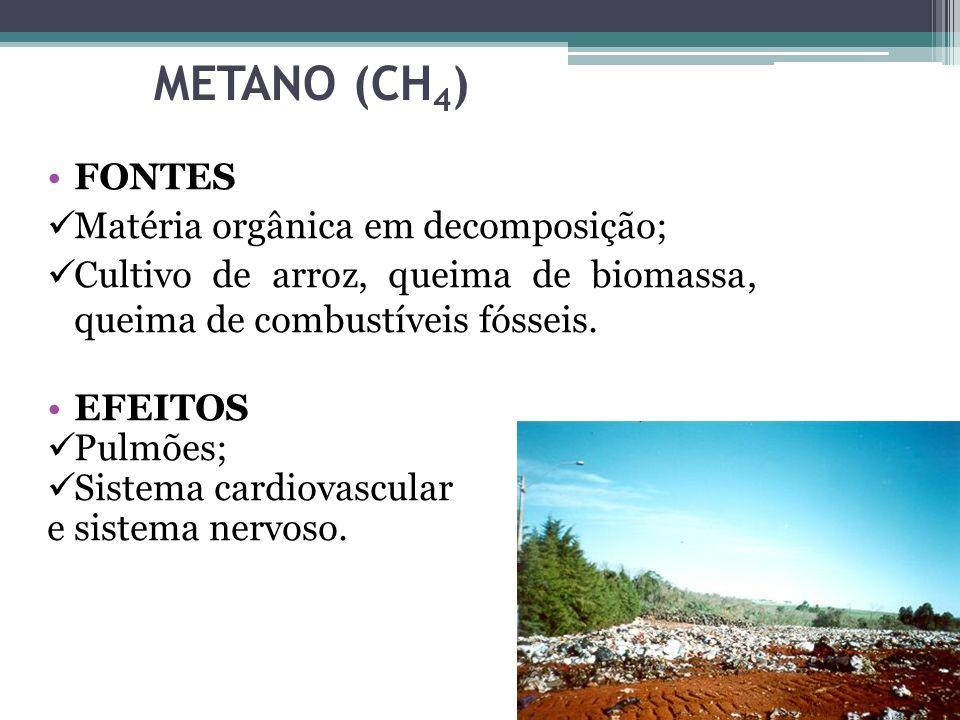 METANO (CH 4 ) FONTES Matéria orgânica em decomposição; Cultivo de arroz, queima de biomassa, queima de combustíveis fósseis. EFEITOS Pulmões; Sistema
