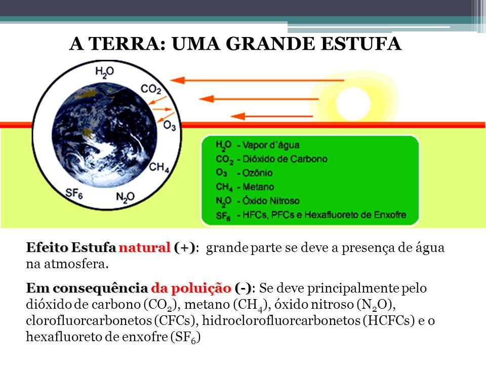 Efeito Estufa natural (+) Efeito Estufa natural (+): grande parte se deve a presença de água na atmosfera. Em consequência da poluição (-) Em consequê