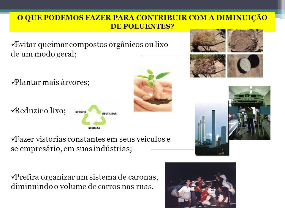 O QUE PODEMOS FAZER PARA CONTRIBUIR COM A DIMINUIÇÃO DE POLUENTES? Evitar queimar compostos orgânicos ou lixo de um modo geral; Plantar mais árvores;