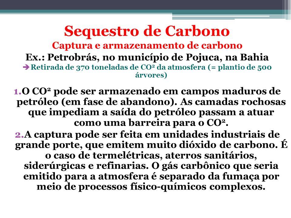 Sequestro de Carbono Captura e armazenamento de carbono Ex.: Petrobrás, no município de Pojuca, na Bahia Retirada de 370 toneladas de CO 2 da atmosfer