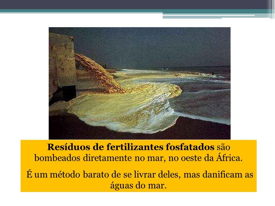 Resíduos de fertilizantes fosfatados são bombeados diretamente no mar, no oeste da África. É um método barato de se livrar deles, mas danificam as águ
