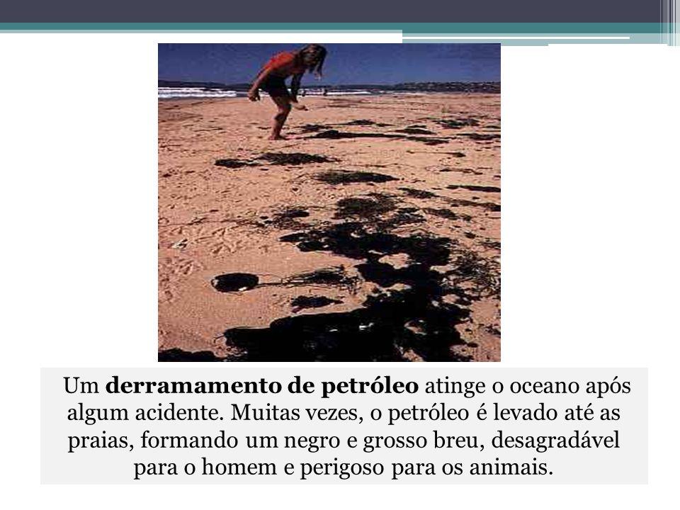 Um derramamento de petróleo atinge o oceano após algum acidente. Muitas vezes, o petróleo é levado até as praias, formando um negro e grosso breu, des