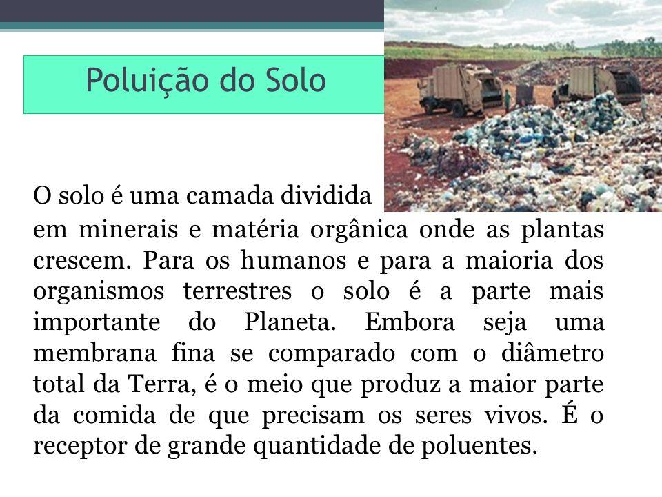 Poluição do Solo O solo é uma camada dividida em minerais e matéria orgânica onde as plantas crescem. Para os humanos e para a maioria dos organismos