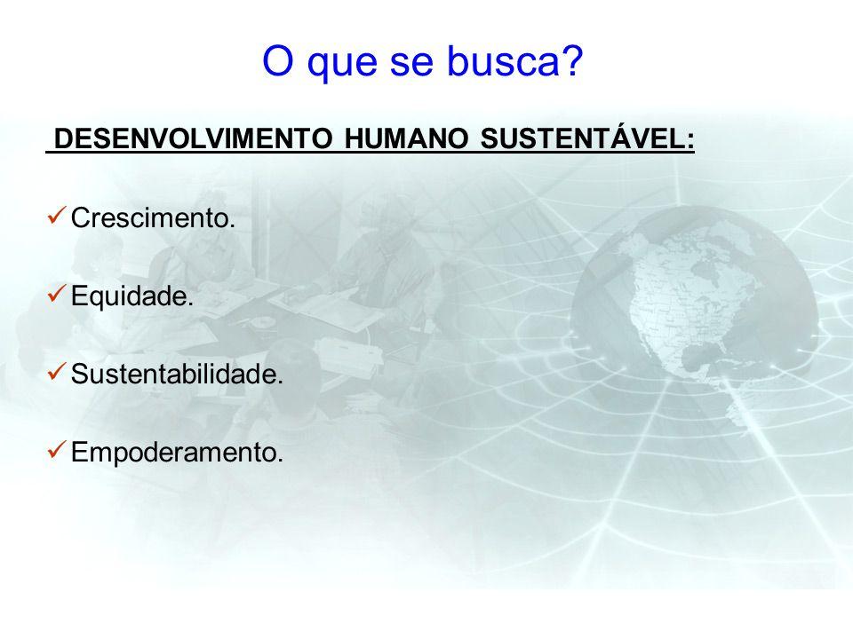 O que se busca? DESENVOLVIMENTO HUMANO SUSTENTÁVEL: Crescimento. Equidade. Sustentabilidade. Empoderamento.
