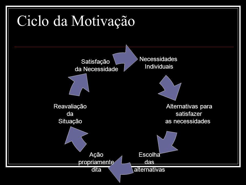 Ciclo da Motivação Necessidades Individuais Alternativas para satisfazer as necessidades Escolha das alternativas Ação propriamente dita Reavaliação d