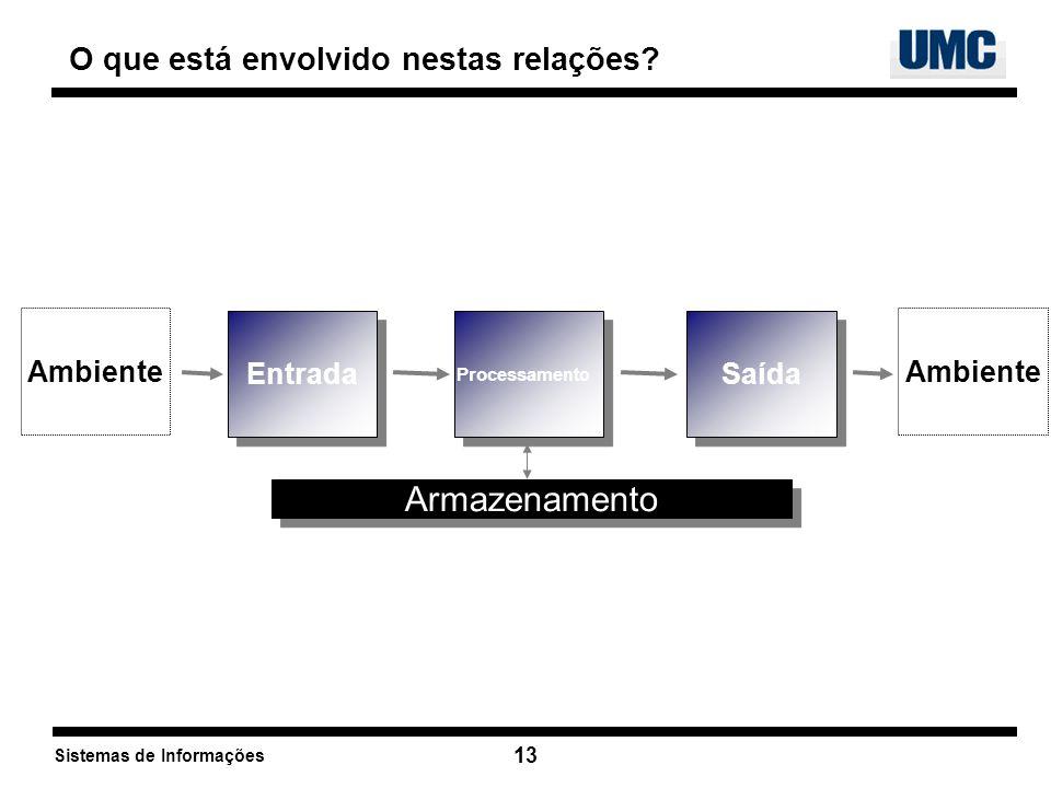 Sistemas de Informações 13 O que está envolvido nestas relações? Entrada Processame nto Saída Armazenamento Ambiente