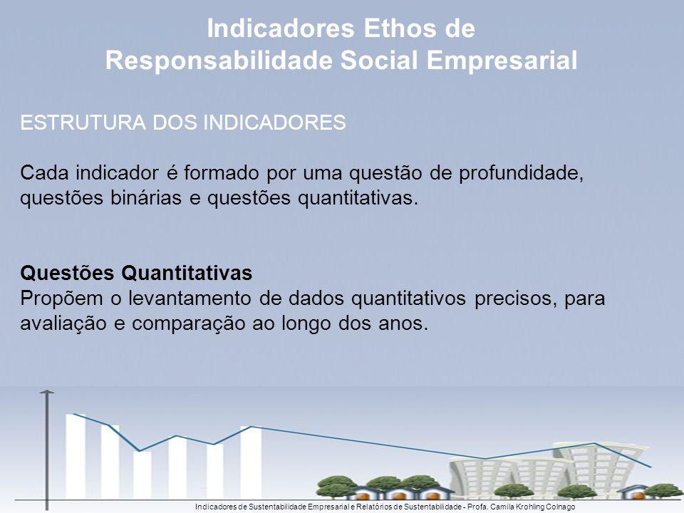 ESTRUTURA DOS INDICADORES Cada indicador é formado por uma questão de profundidade, questões binárias e questões quantitativas. Questões Quantitativas