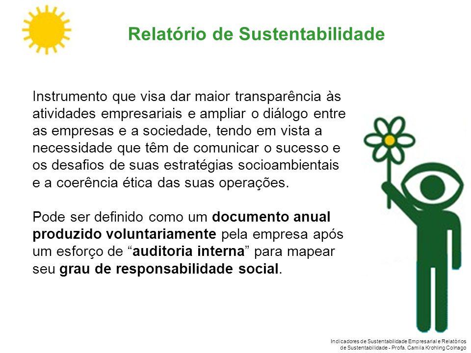 Indicadores de Sustentabilidade Empresarial e Relatórios de Sustentabilidade - Profa. Camila Krohling Colnago Relatório de Sustentabilidade Instrument
