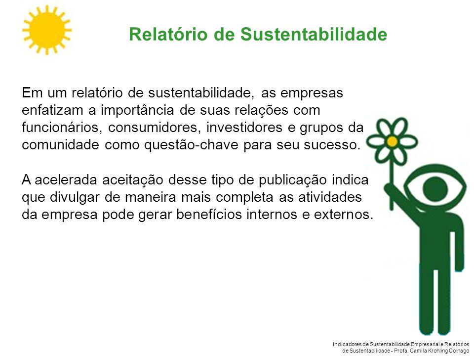 Indicadores de Sustentabilidade Empresarial e Relatórios de Sustentabilidade - Profa. Camila Krohling Colnago Relatório de Sustentabilidade Em um rela