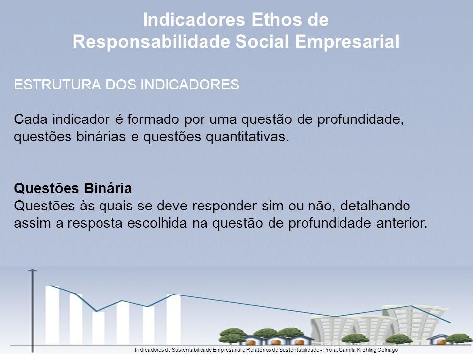 ESTRUTURA DOS INDICADORES Cada indicador é formado por uma questão de profundidade, questões binárias e questões quantitativas. Questões Binária Quest