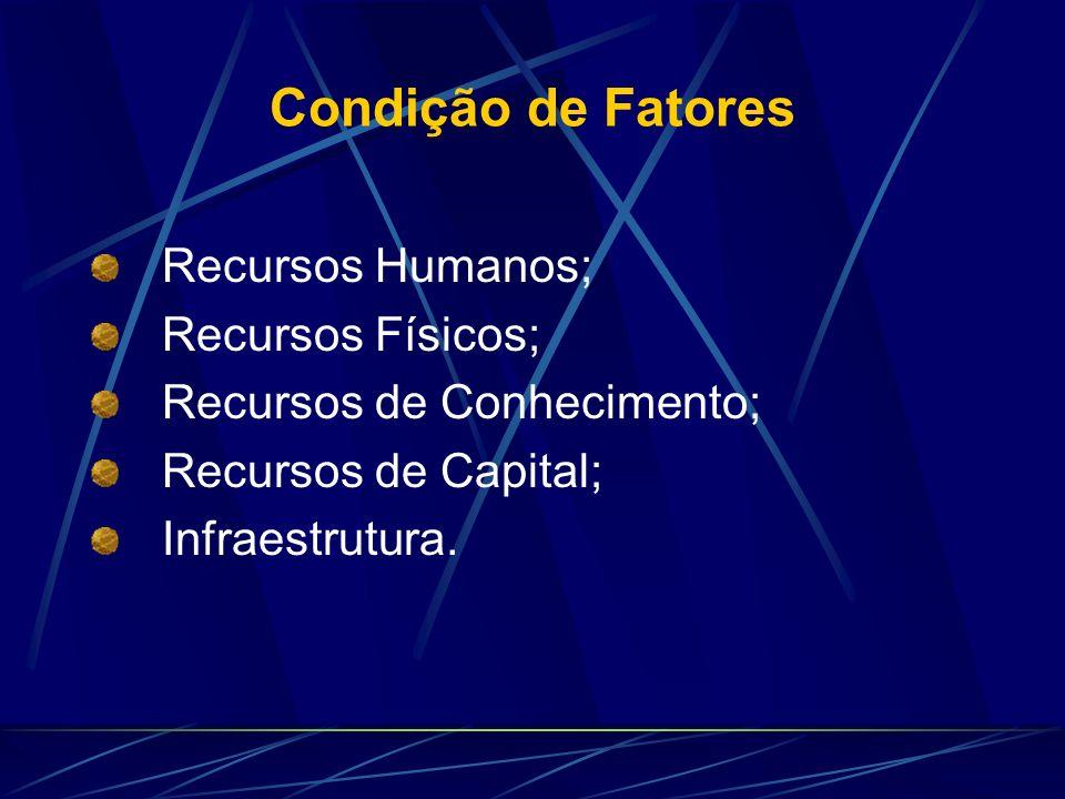 Condição de Fatores Recursos Humanos; Recursos Físicos; Recursos de Conhecimento; Recursos de Capital; Infraestrutura.