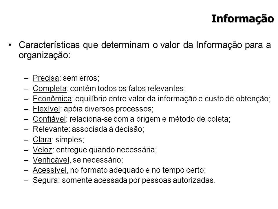 Informação Características que determinam o valor da Informação para a organização: –Precisa: sem erros; –Completa: contém todos os fatos relevantes;