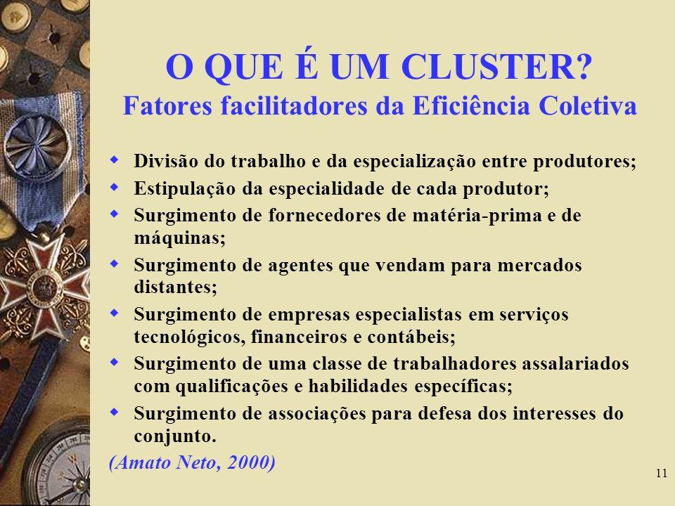 11 O QUE É UM CLUSTER? Fatores facilitadores da Eficiência Coletiva Divisão do trabalho e da especialização entre produtores; Estipulação da especiali