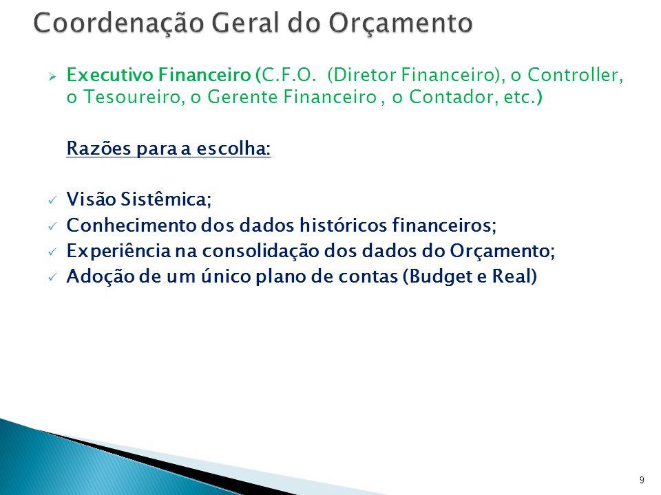 Executivo Financeiro (C.F.O. (Diretor Financeiro), o Controller, o Tesoureiro, o Gerente Financeiro, o Contador, etc.) Razões para a escolha: Visão Si