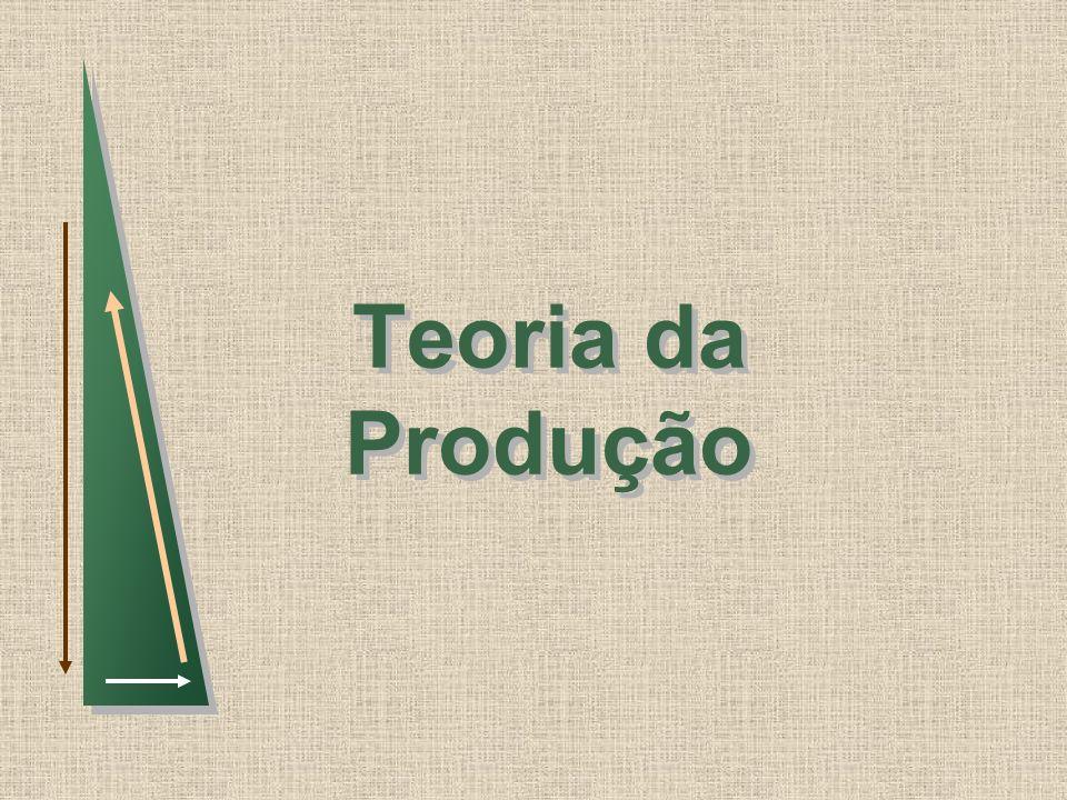 Slide 2 Tecnologia da Produção Funçao de Produção: Indica o maior nível de produção que uma firma pode atingir para cada possível combinação de insumos, dado o estado da tecnologia.