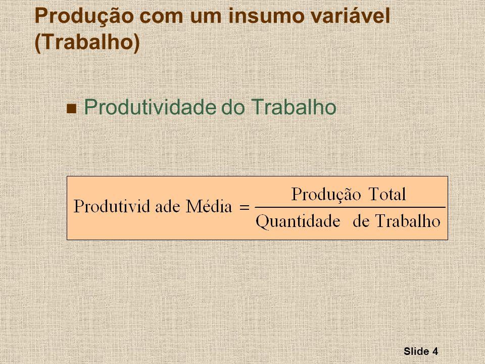 Slide 4 Produtividade do Trabalho Produção com um insumo variável (Trabalho)