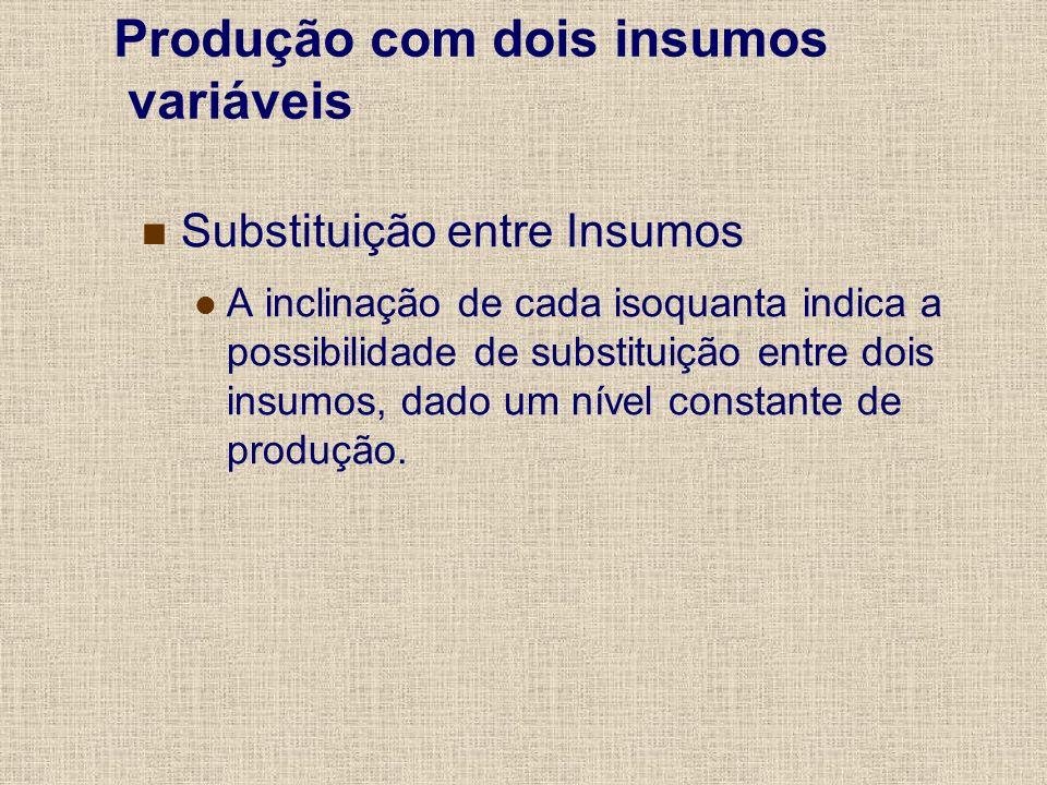 Slide 17 A produção total é uma função de insumos variáveis e insumos fixos.