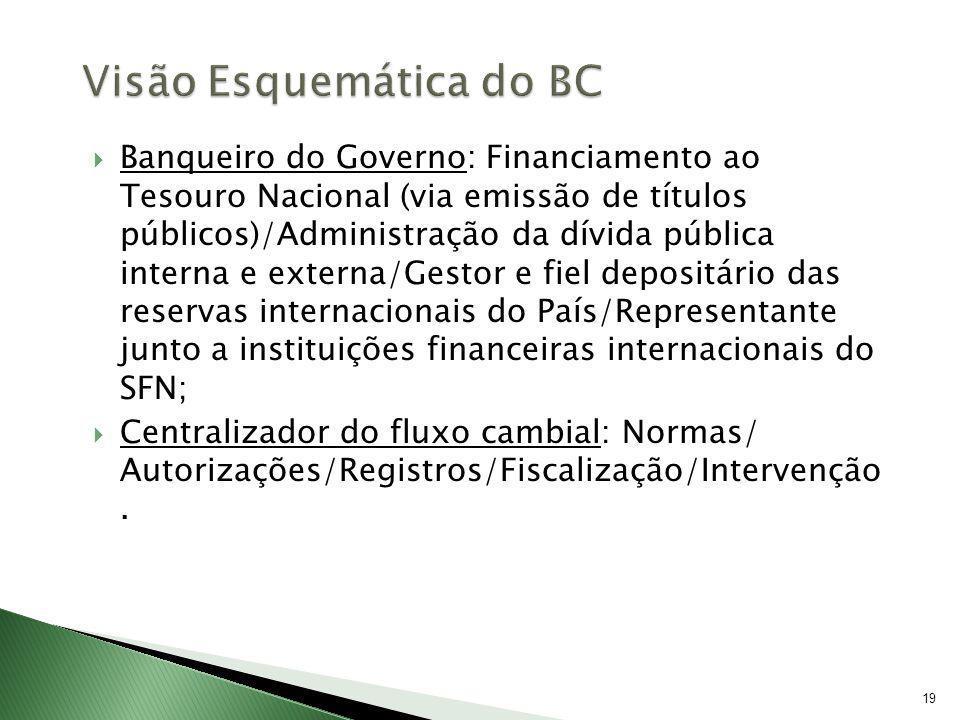 19 Banqueiro do Governo: Financiamento ao Tesouro Nacional (via emissão de títulos públicos)/Administração da dívida pública interna e externa/Gestor
