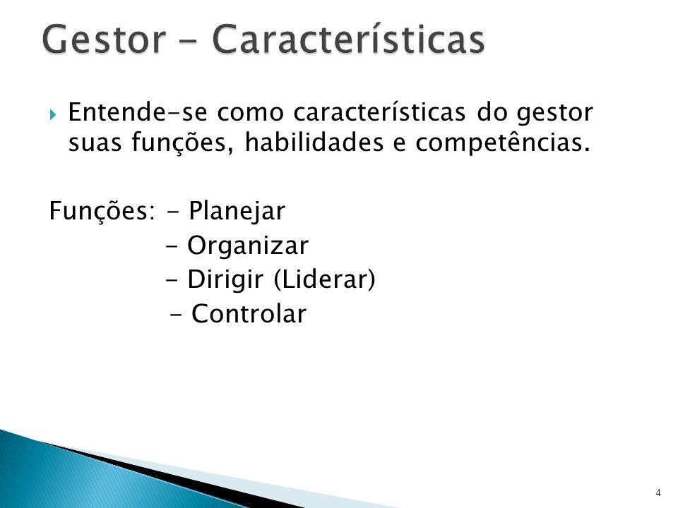 Entende-se como características do gestor suas funções, habilidades e competências. Funções: - Planejar - Organizar - Dirigir (Liderar) - Controlar 4