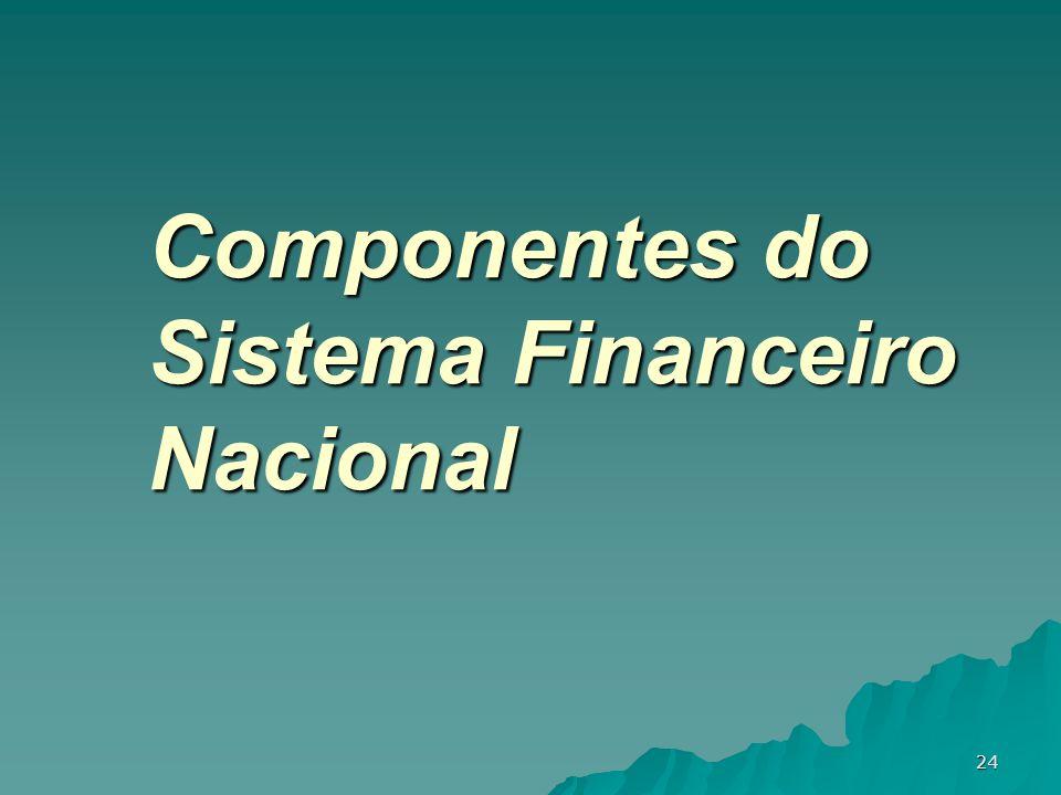 24 Componentes do Sistema Financeiro Nacional