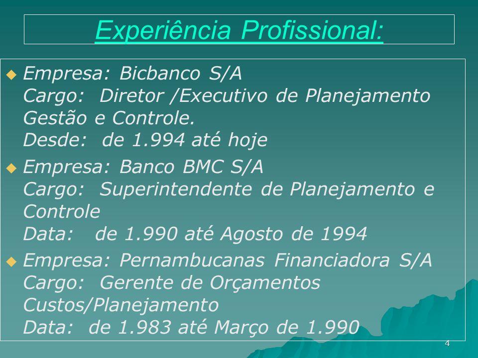 4 Experiência Profissional: Empresa: Bicbanco S/A Cargo: Diretor /Executivo de Planejamento Gestão e Controle. Desde: de 1.994 até hoje Empresa: Banco