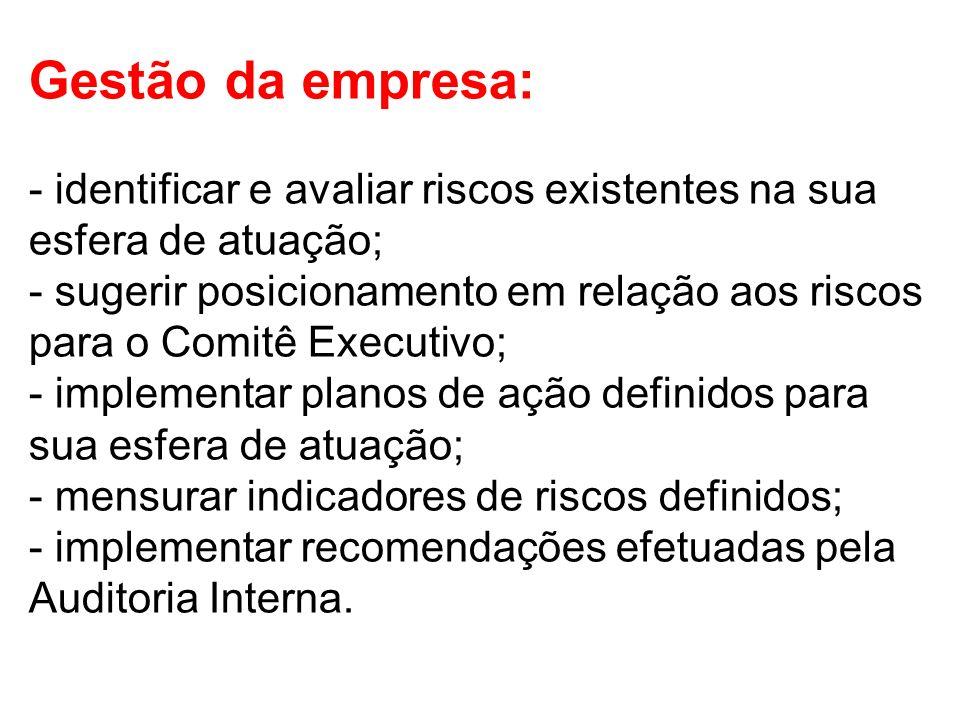 Gestão da empresa: - identificar e avaliar riscos existentes na sua esfera de atuação; - sugerir posicionamento em relação aos riscos para o Comitê Ex