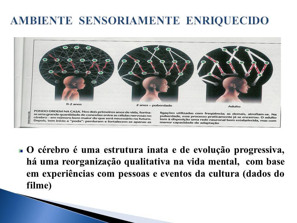 O cérebro é uma estrutura inata e de evolução progressiva, há uma reorganização qualitativa na vida mental, com base em experiências com pessoas e eventos da cultura (dados do filme)