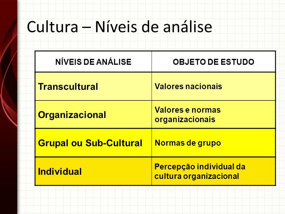 NÍVEIS DE ANÁLISEOBJETO DE ESTUDO Transcultural Valores nacionais Organizacional Valores e normas organizacionais Individual Percepção individual da c