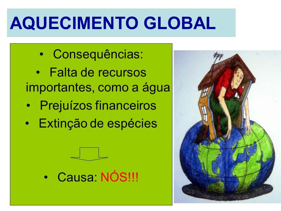 AQUECIMENTO GLOBAL Consequências: Falta de recursos importantes, como a água Prejuízos financeiros Extinção de espécies Causa: NÓS!!!