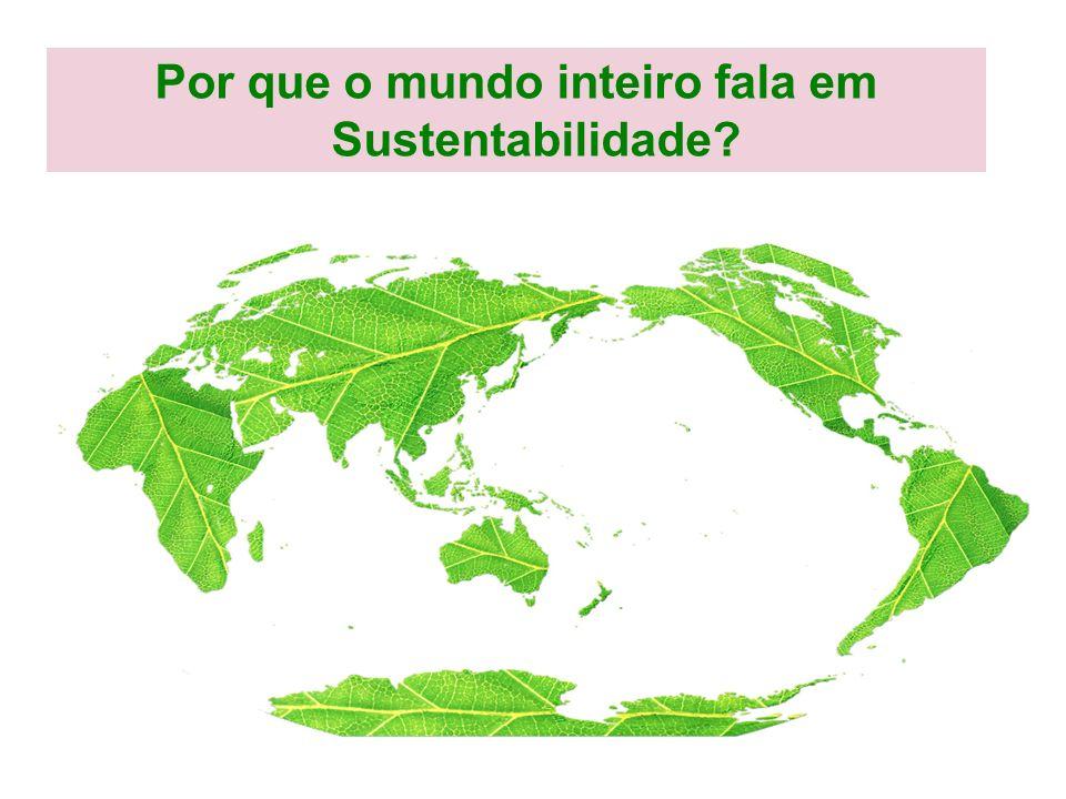 20% da População Mundial é responsável por: – 85% do consumo de alimentos – 65% do consumo de energia – 84% do consumo de papel – 85% do consumo de metais e químicos – 70% das emissões de CO 2 Fonte: World Bank, 2001 CONSUMO