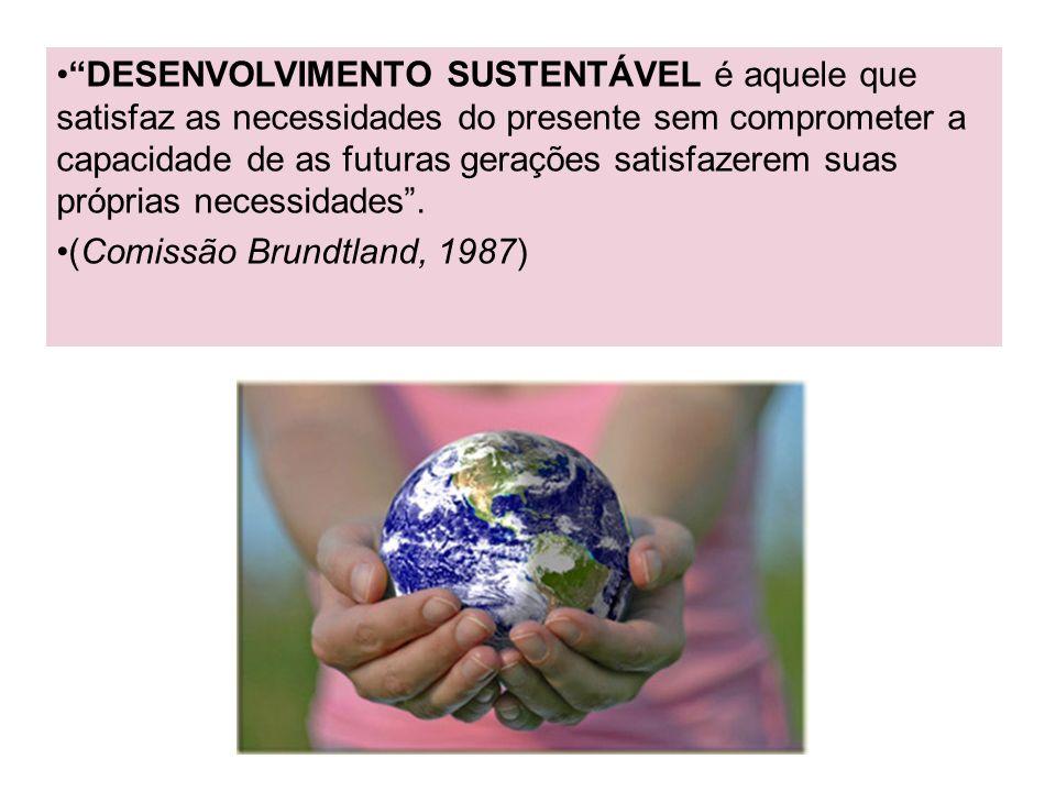 DESENVOLVIMENTO SUSTENTÁVEL é aquele que satisfaz as necessidades do presente sem comprometer a capacidade de as futuras gerações satisfazerem suas pr