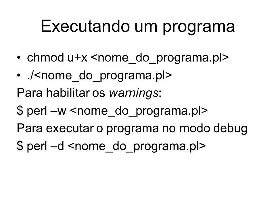 Executando um programa chmod u+x./ Para habilitar os warnings: $ perl –w Para executar o programa no modo debug $ perl –d