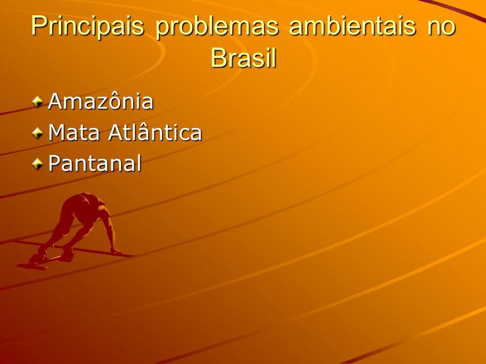Principais problemas ambientais no Brasil Amazônia Mata Atlântica Pantanal