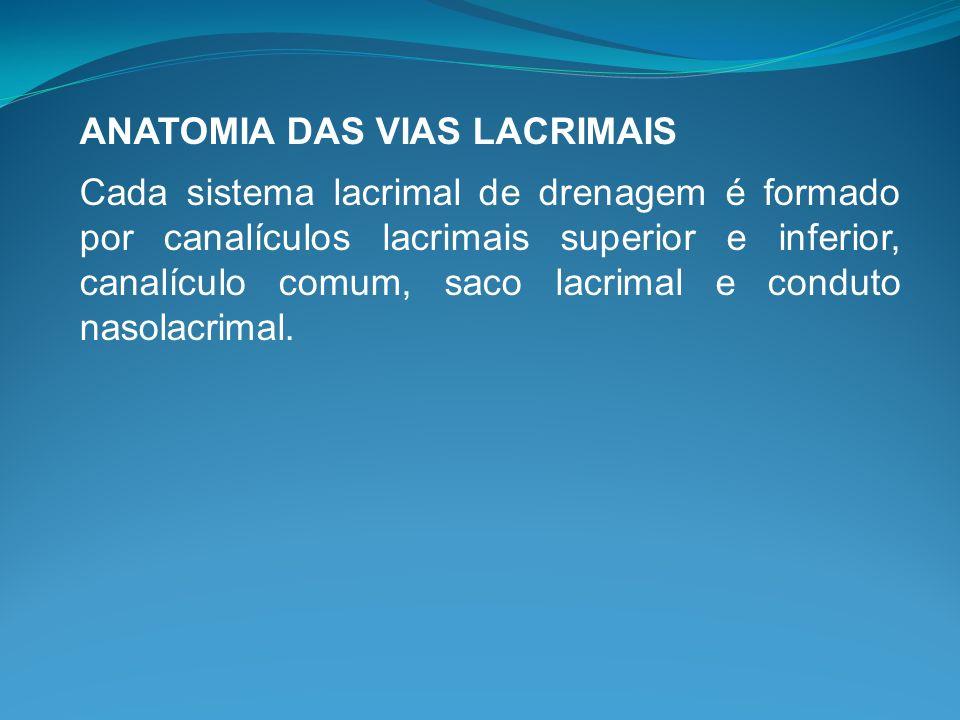 ANATOMIA DAS VIAS LACRIMAIS Cada sistema lacrimal de drenagem é formado por canalículos lacrimais superior e inferior, canalículo comum, saco lacrimal
