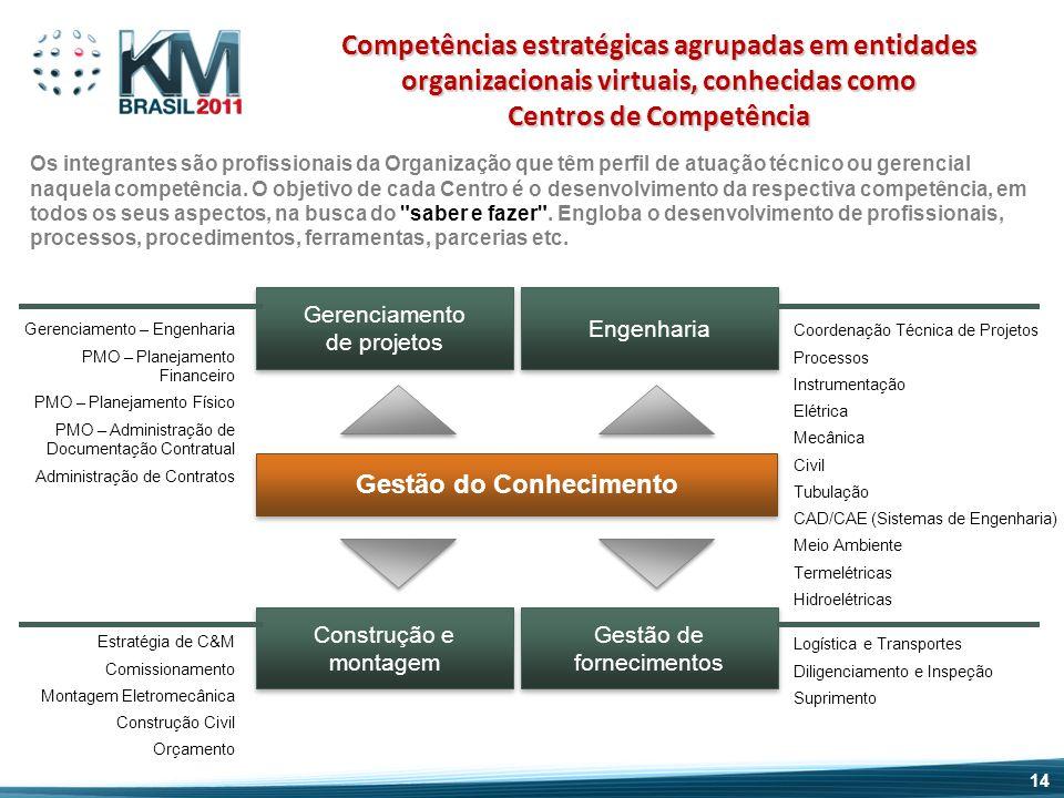 Gestão do Conhecimento Os integrantes são profissionais da Organização que têm perfil de atuação técnico ou gerencial naquela competência. O objetivo